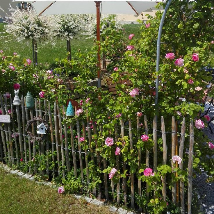 25 best ideas about rosenbogen auf pinterest bambus im. Black Bedroom Furniture Sets. Home Design Ideas