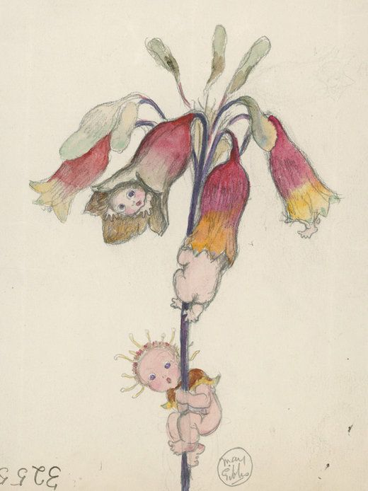 """""""The Christmas Bell Babies"""". Babies Climbing in and About the Xmas Bell Flower, by May Gibbs. From The National Archives of Australia."""