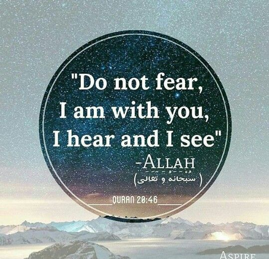 Qur'an verse                                                                                                                                                                                 More