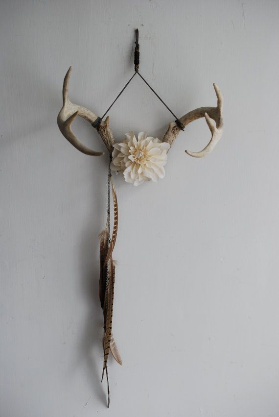 Deer Antlers Flowers Amp Feathers Wall Hanging Taxidermy
