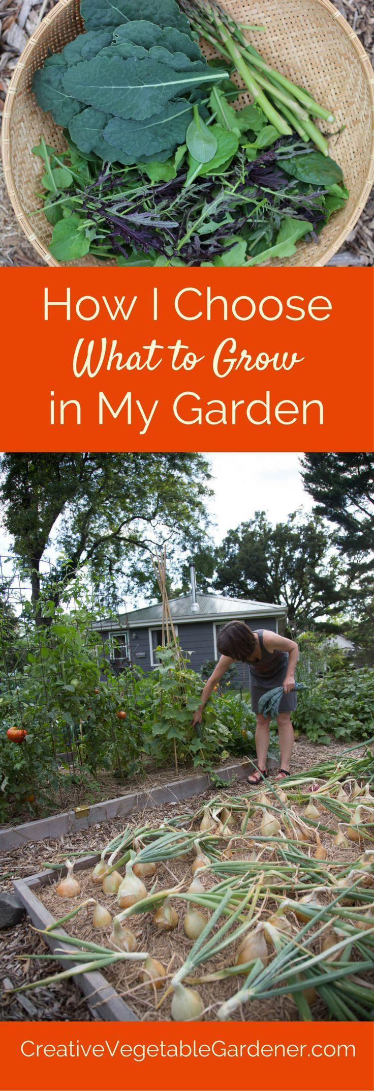 How I Choose Which Vegetables To Grow In My Garden