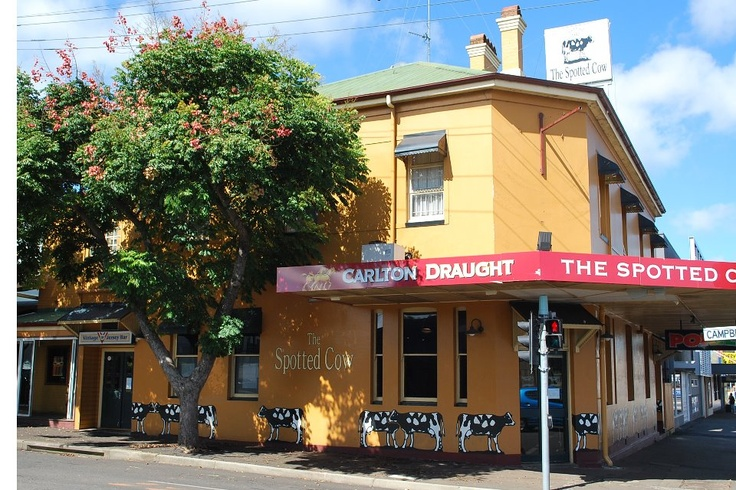 The Spotted Cow Toowoomba - you might find us here on Friday lunch time