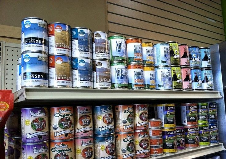 Healthiest Canned Food For Dogs