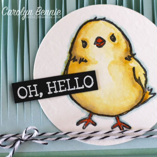 Oh, Hello Chick - Honeycomb Happiness Sale-A-Bration Free Stampset by Carolyn Bennie - Independent Stampin' Up! Demonstrator carolynbennie.com