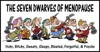MenopauseLaugh, Quotes, Funny Pictures, Menopause, Looks Forward, Funny Stuff, Humor, Seven Dwarfs, Snow White