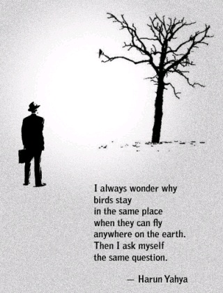 Yup: Harunyahya, Food For Thoughts, Harun Yahya, So True, Foodforthought, Places, Flying Away, Birds, Inspiration Quotes