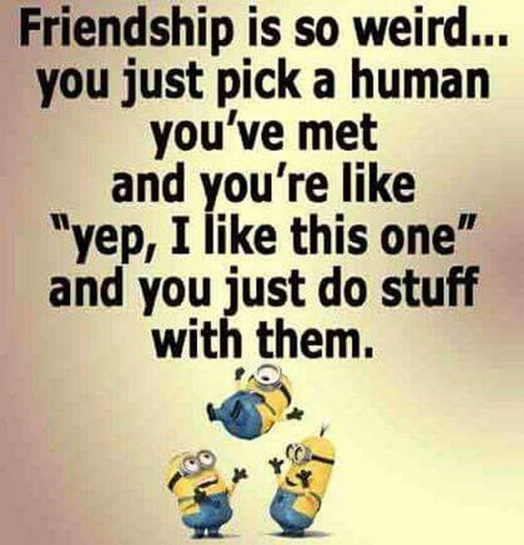 New Comical Minions images with quotes (01:05:39 PM, Saturday 26, December 2015 PST) – 10 pics