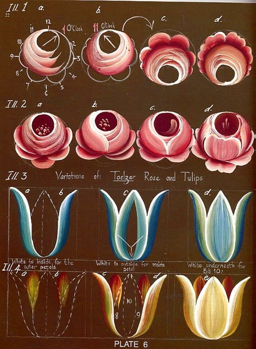 Steps for more traditional roses and tulips.