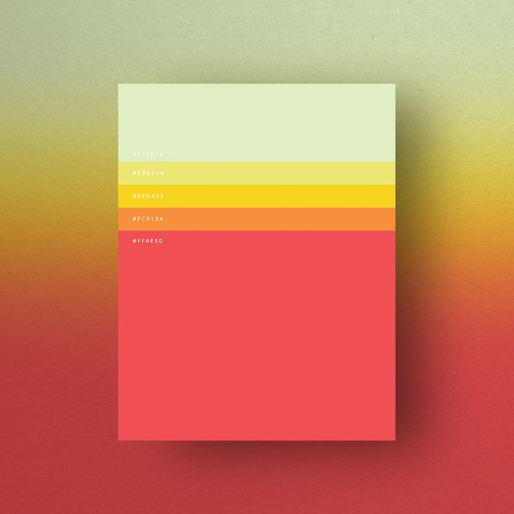 Minimal web color palettes/combination with hex code - 6
