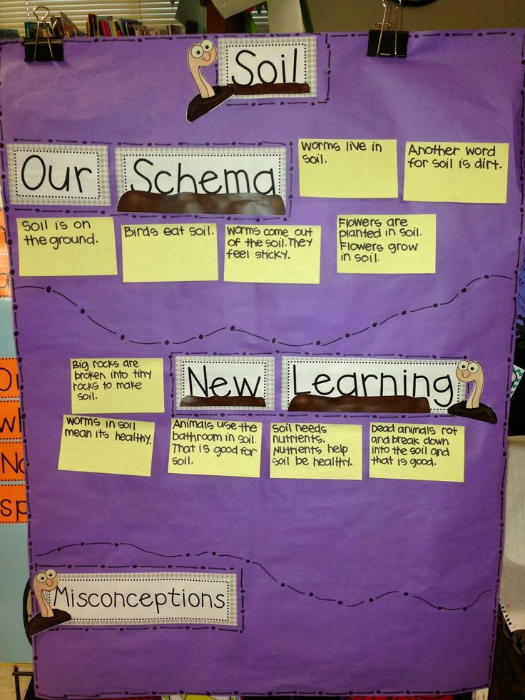 Soil+ schema, new learning,  misconceptions