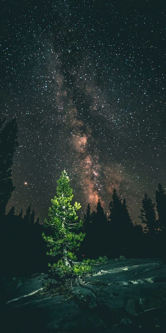 60 Gorgeous Wallpapers For Your New Iphone Xs Max Backgrounds Cool Night Sky Photography Nature Photography Sky Photography