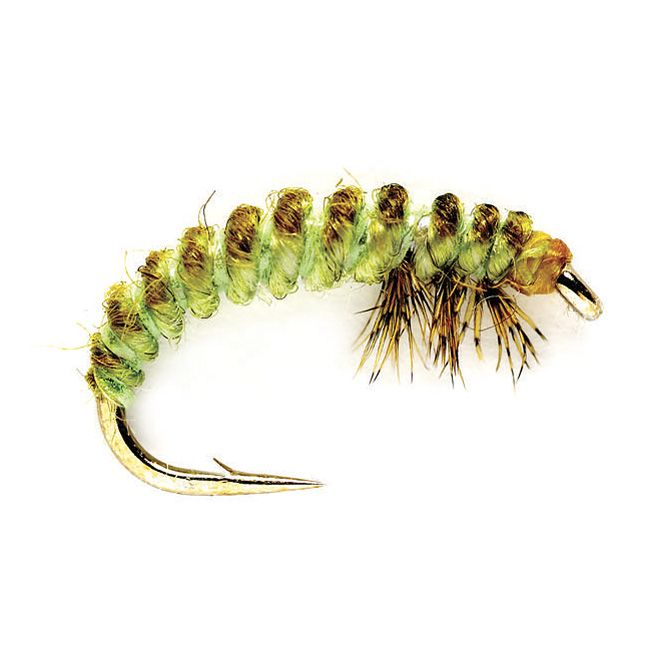 Just found this Caddis Pupae Fly - Oliver Edwards Rhycophila Larva -- Orvis on Orvis.com!