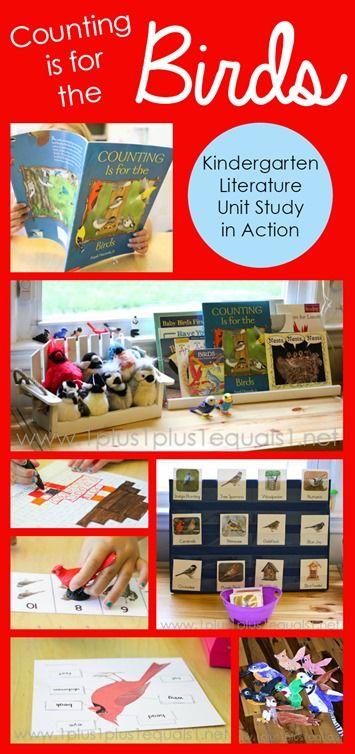 Bird Theme Kindergarten ~ Counting is for the Birds Kindergarten Literature Unit in Action  {FREE printables}