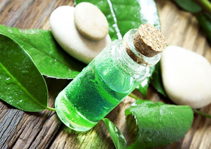 Tea Tree Oil for Sinus Polyps