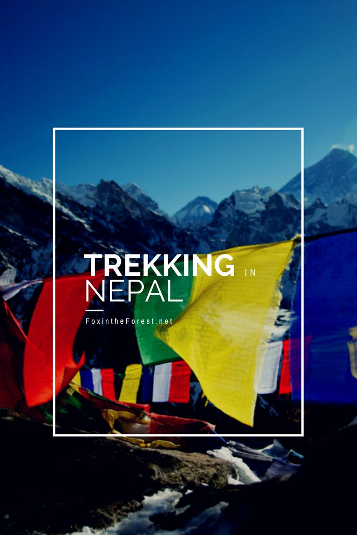 Have you dreamed of trekking among the highest mountains in the world? Nepal is the premier trekking destination for the Himalaya. Experience Nepal with the best agency: Trekking Planner Nepal.