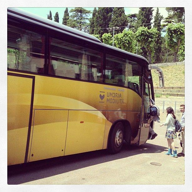 Si parte per il tour delle cantine #InMontefalco foto di @igersumbria