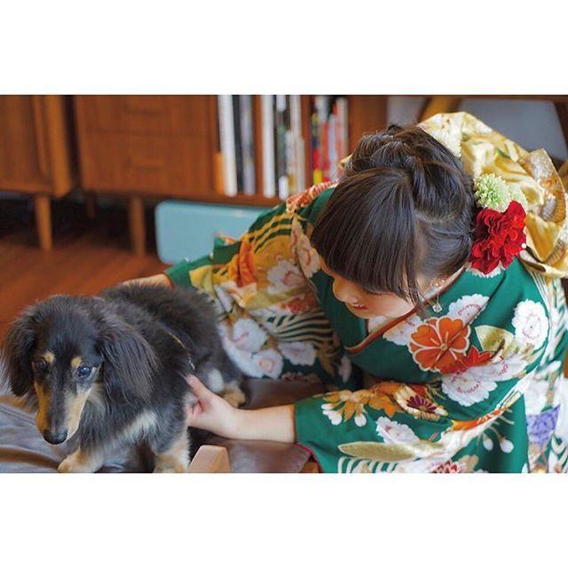 #成人式#自分#愛犬#ミニチュアダックスフント#fujifilm#x100#x100tfujifilm#ミラーレス一眼#ミラーレス#カメラ女子と繋がりたい#カメラ好きな人と繋がりたい#カメラ#レトロ
