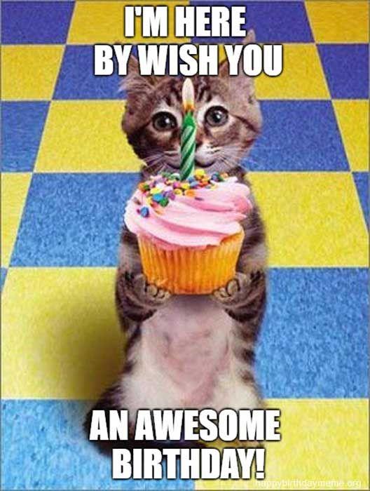 Happy Birthday Mom Meme GIFs | Tenor