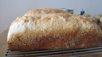 Making Michael Pollan Proud: English Muffin Bread