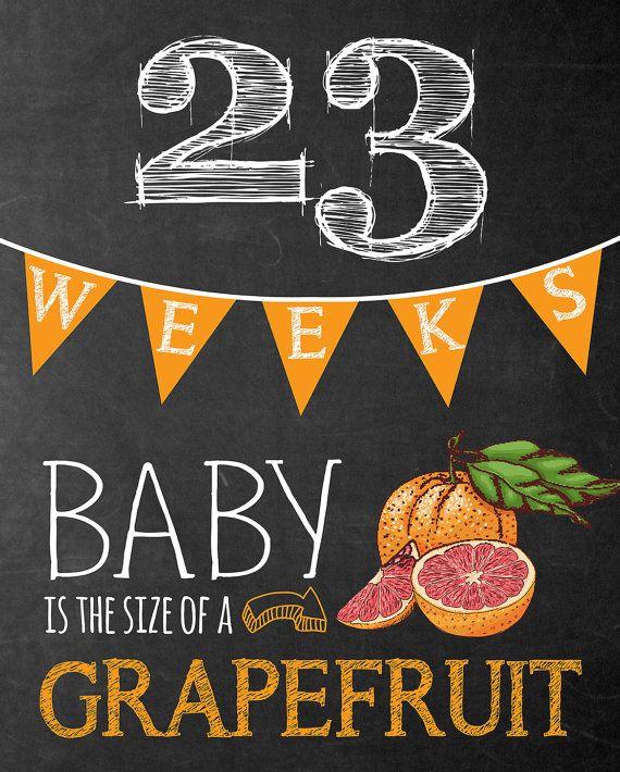 Weekly Pregnancy Chalkboard Sign Week 6-40 von TealOliveDesigns