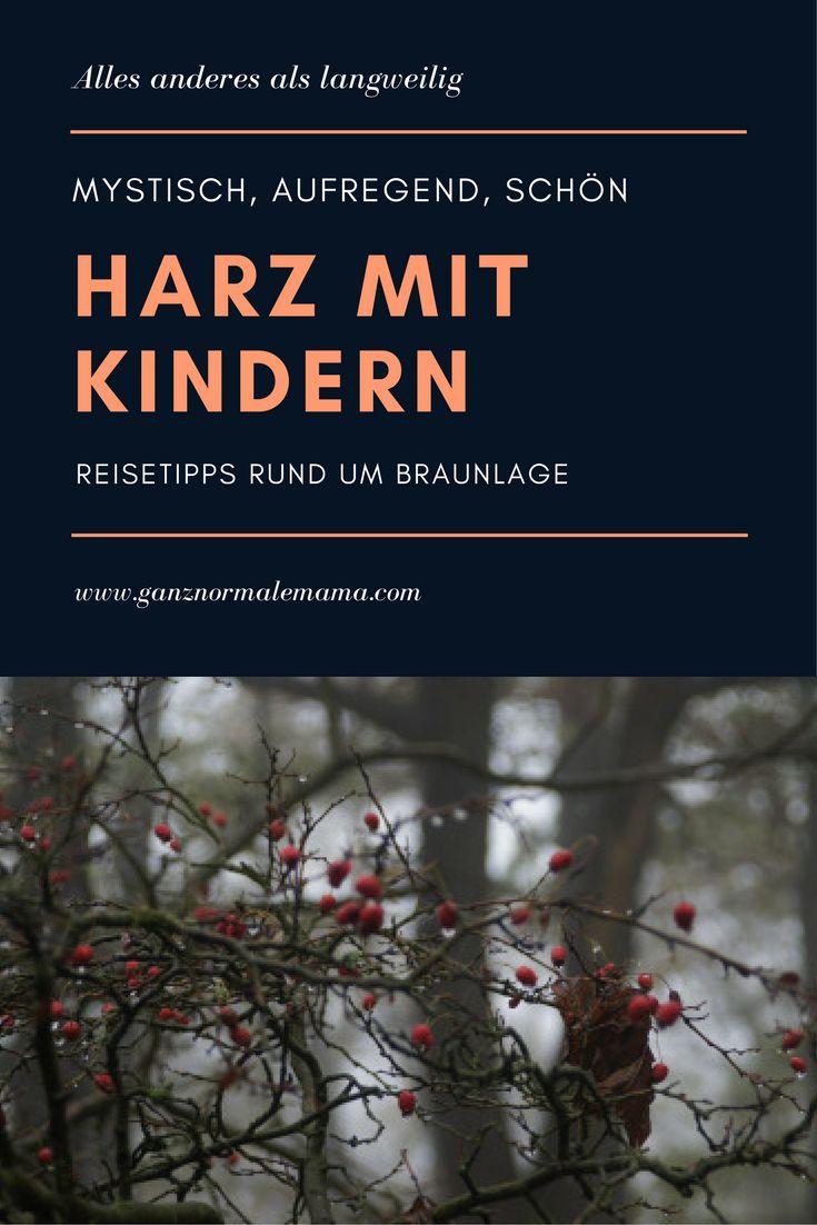Der Harz ist ein unterschätztes Reiseziel für den deutschlandurlaub. Reisetipp für den Familienurlaub, Sehenswürdigkeiten und Natur in den bergen.