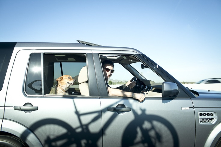 Land Rover USA Tumblr Photographer Chris McPherson takes his dog on a road-trip through Phoenix, Arizona in a Land Rover LR4. #LandRover #Phoenix #Arizona #LandRoverPets