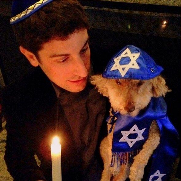 Jason Biggs Throws Dog a �Bark� Mitzvah