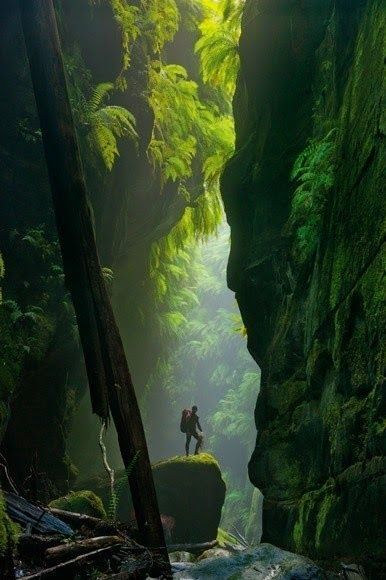 Houses Weddin Photo - Beautiful Mountains - Blue Mountains- Australia 067317247388873