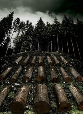 Stop the deforestation, wherever you are in this world!