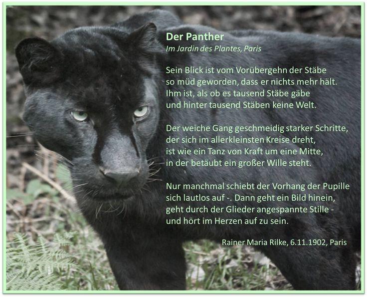 best german images learn german german  351 best german images learn german german language and vocabulary