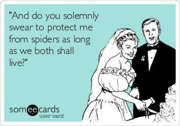 """""""And do you solemnly swear to protect me from spiders as long as we both shall live?"""""""