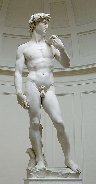 David, aside the entrance to the Palazzo della Signoria, Florence, Michelangelo, 1501. Symbol of democracy in opposition of the Medici family and rival states*