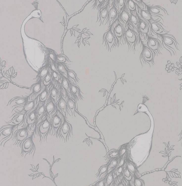 Peacock Grey wallpaper by Albany