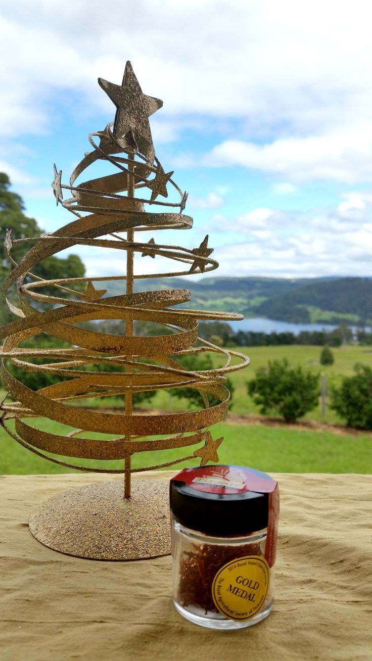 One gram #TasSaff saffron, an ideal Christmas gift.  Check out all our Saffron online http://bit.ly/1FIBUf5 - #saffron #Christmas