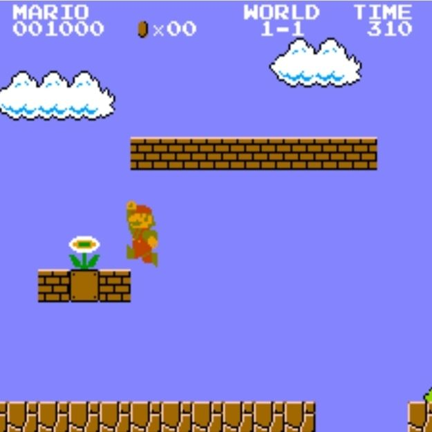 Stop and smell the flowers. | 10 Life Lessons You Can Learn From Super Mario Bros.