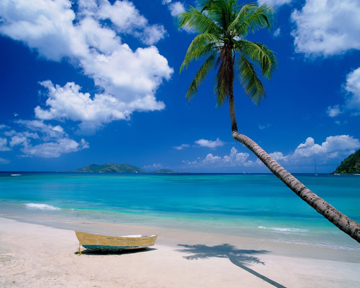 70 best british virgin islands images on pinterest for Beach scene mural wallpaper