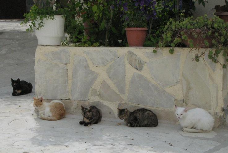 Matala ; Crete ; Greece