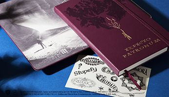 NEED! - Harry Potter Limited Edition Collection - Moleskine ®