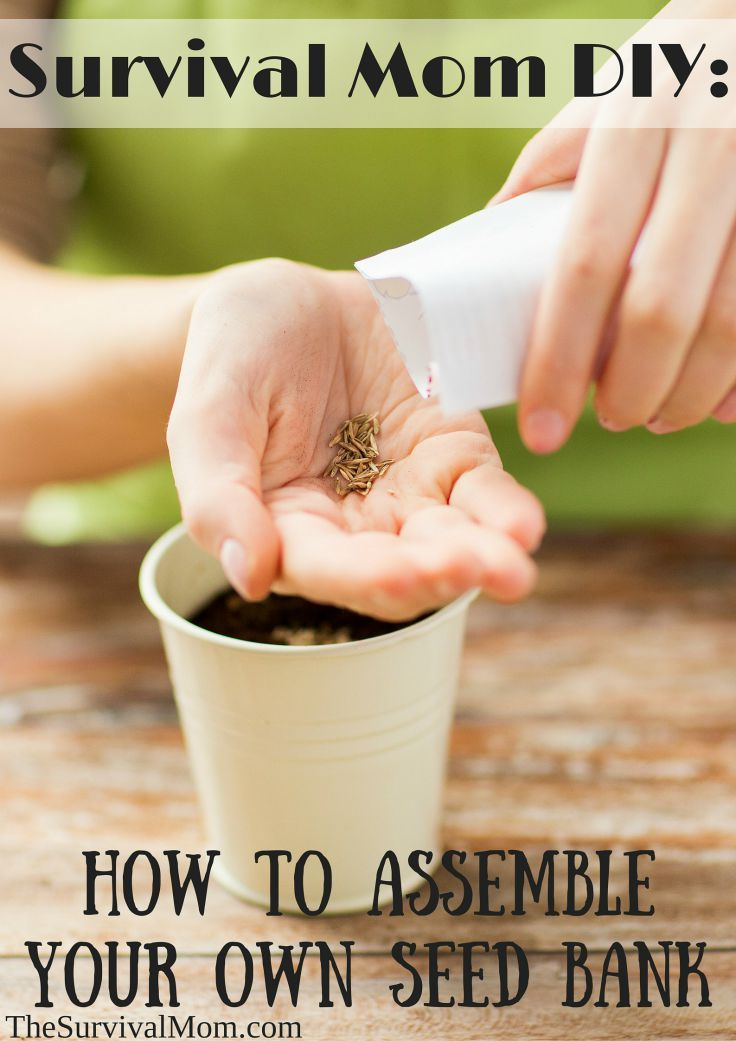 A realistic look at saving seeds for emergencies! Love it! How to Assemble Your Own Seed Bank // The Survival Mom