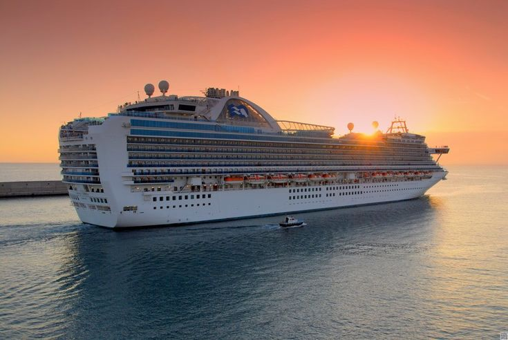 Princess Cruises is owned by Carnival Corporation & plc, accounting for almost 20% share of its annual revenue.