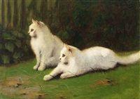 Zwei weiße Perserkatzen auf Wiese by Arthur Heyer