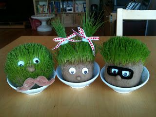 ...and live!: Relive your childhood dreams and make your own chia pet!