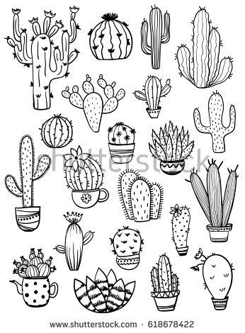 Set of isolated black sketch cactus and succulent …