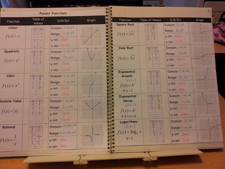 Functions Graphic Organizers also Polynomial Functions Worksheet ...