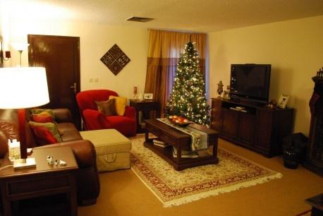 The best elegant living room for Christmas