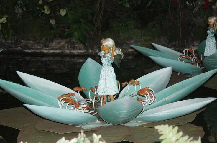 Indische waterlelies efteling