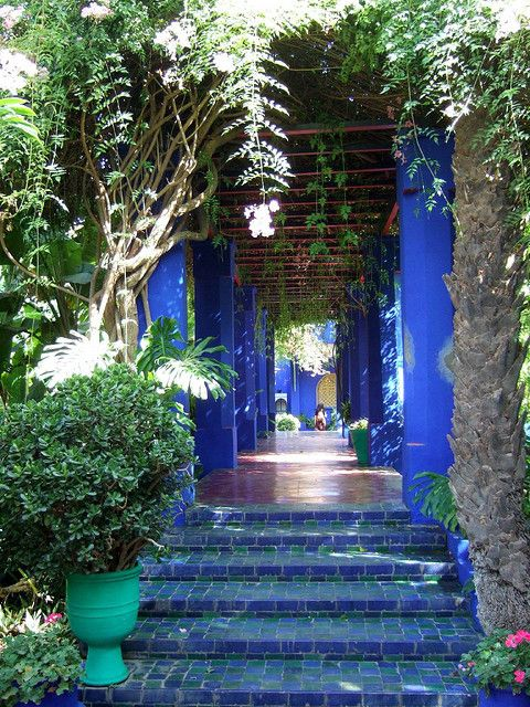 Majorelle Gardens, Marrakech | Pinterest | Marrakech, Morocco and Gardens