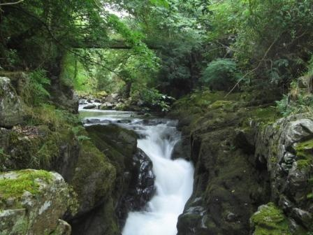 Hethpool Gorge, College Valley © Northumberland National Park