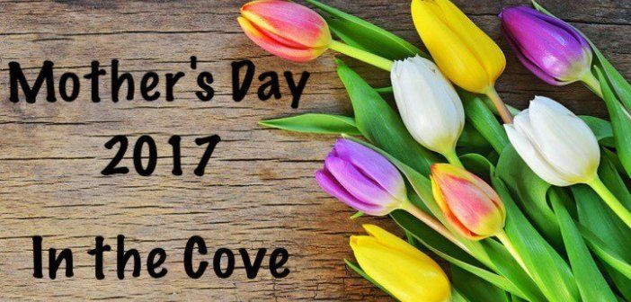 Mother's Day 2017 – Gifts and Dining in Lane Cove.  A selection of great gifts an ideas for Mother's Day 2017 in Lane Cove