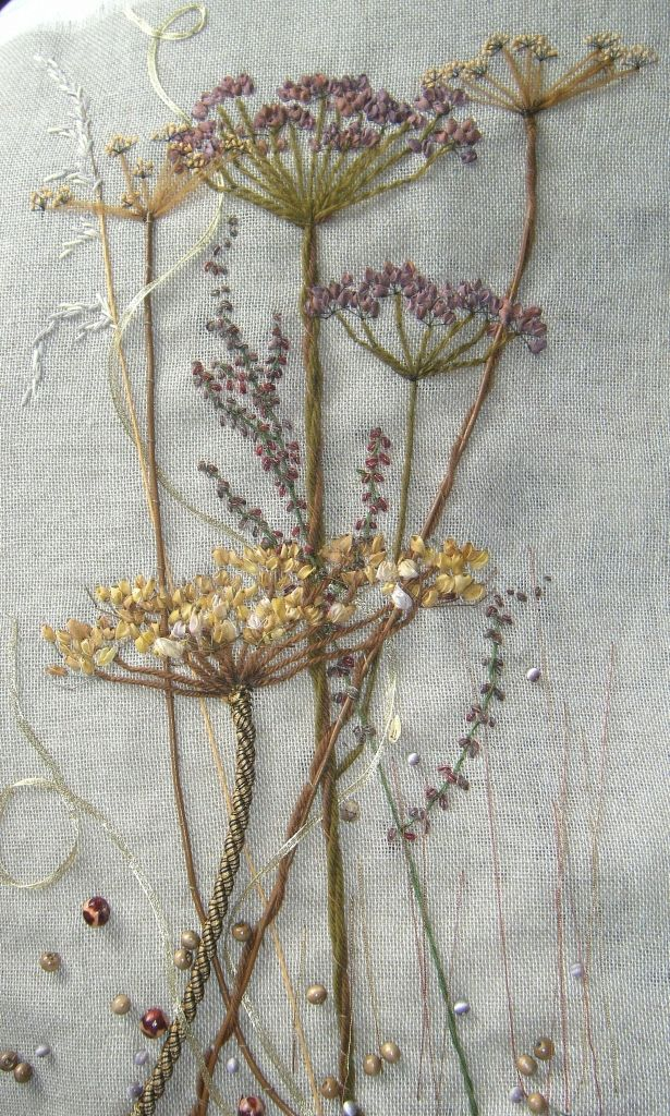 seed heads from life